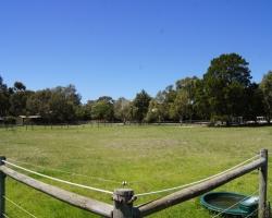 outdoor-yards_DSC02567.JPG