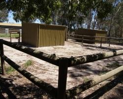 outdoor-yards_DSC02597